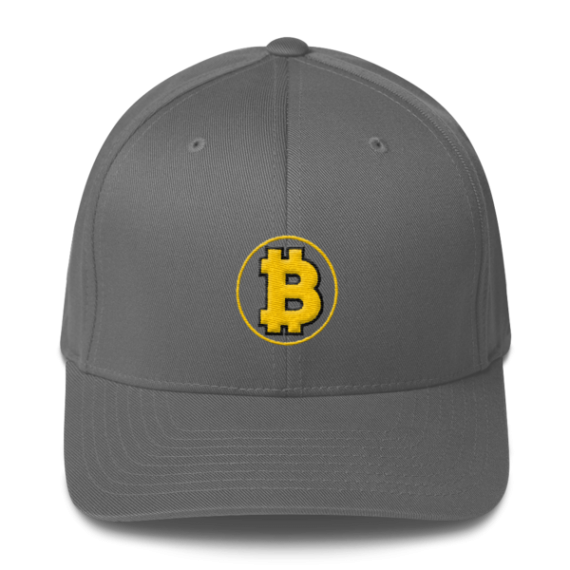 Bitcoin: The Original – 3D Puff – Flexfit Structured Cap - Grey - Front