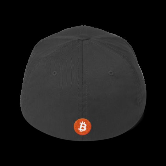 Just HODL it – Flexfit Structured Cap – Dark - Dark Grey - Back
