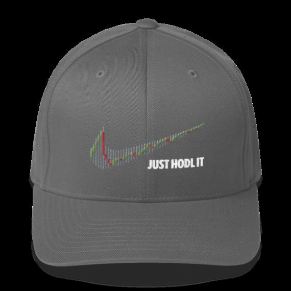 Just HODL it – Flexfit Structured Cap – Dark - Grey - Front
